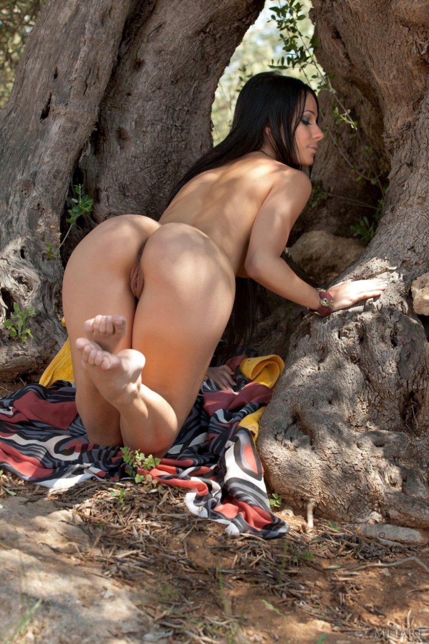 Раздетая русая порноактрисса с длинными волосами под деревом