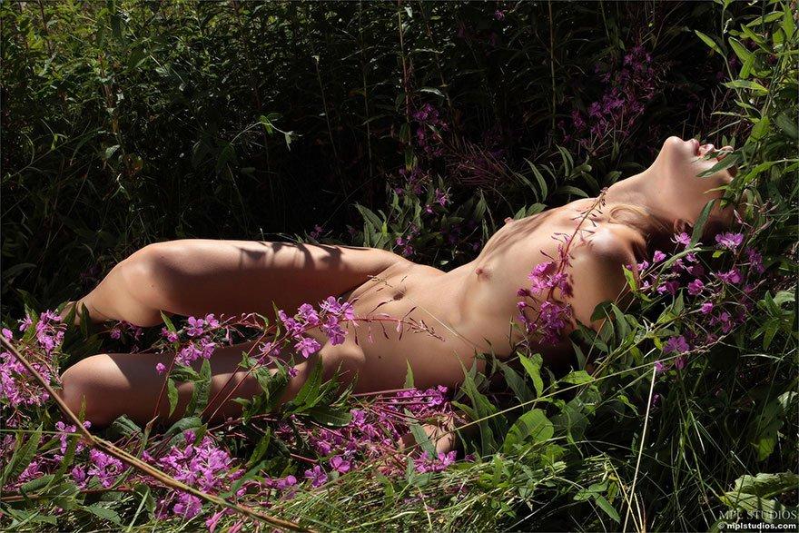 Эротика Цветы Среди Цветов