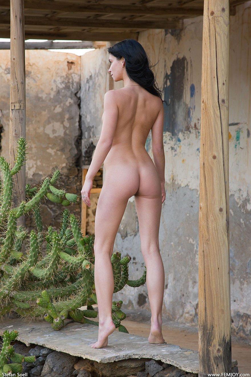 Фото Молоденькой брюнеточки около кактуса секс фото