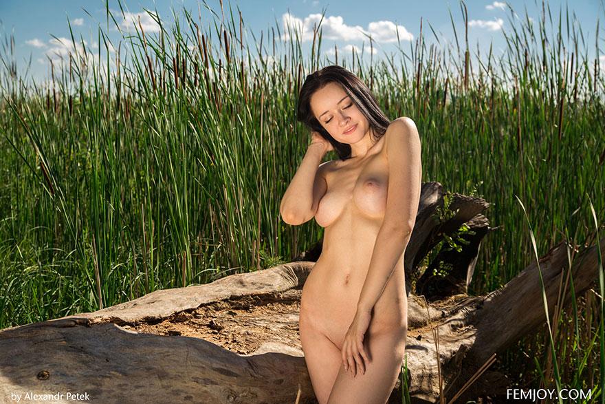 Эротика в естественной среде - молоденькая шатенка с упругими дойками снимает лифчик
