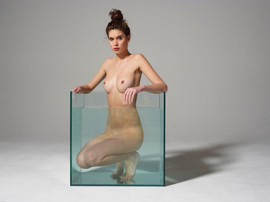 Нагая леди в аквариуме смотреть эротику