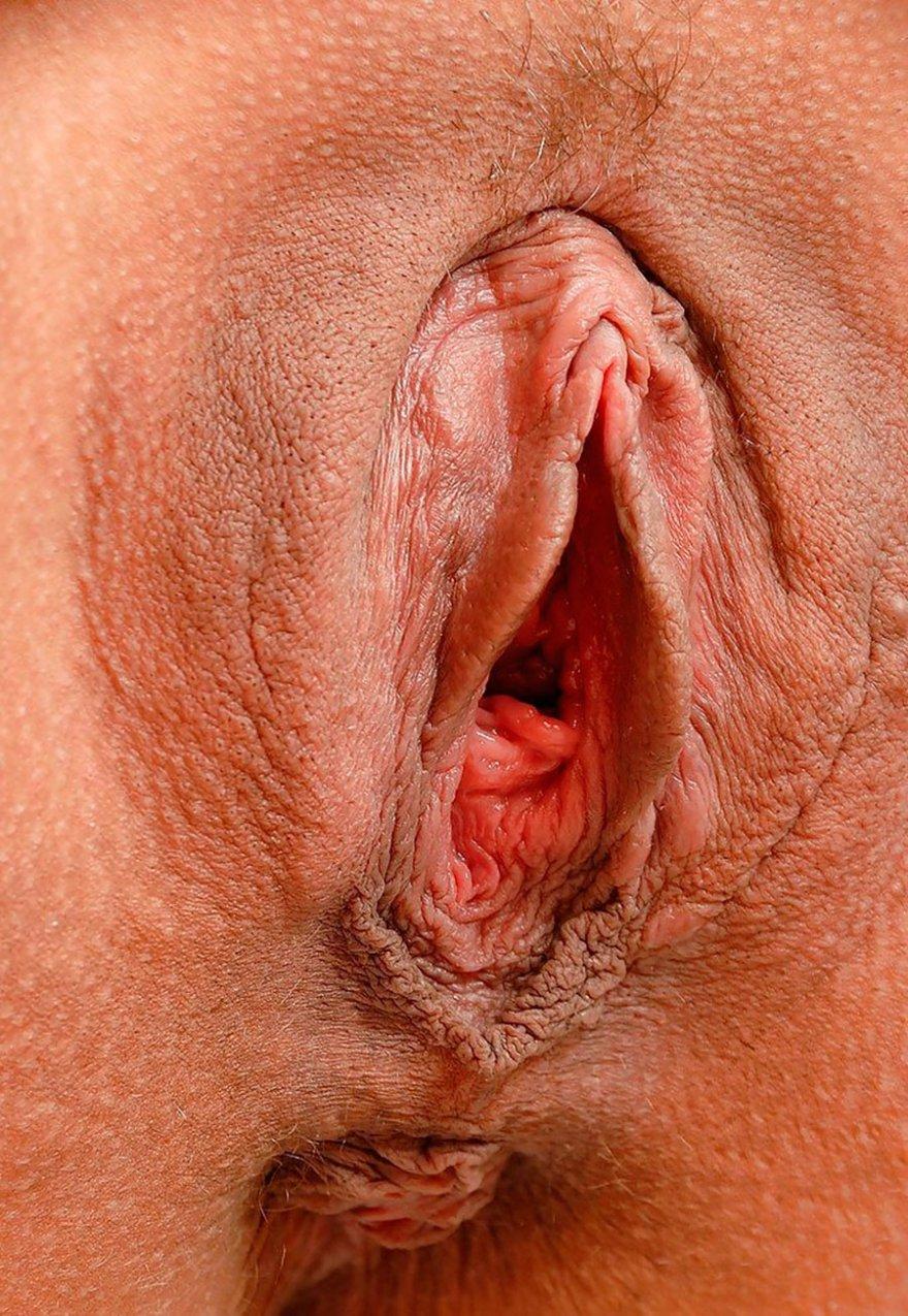 Close up vagina porn pics
