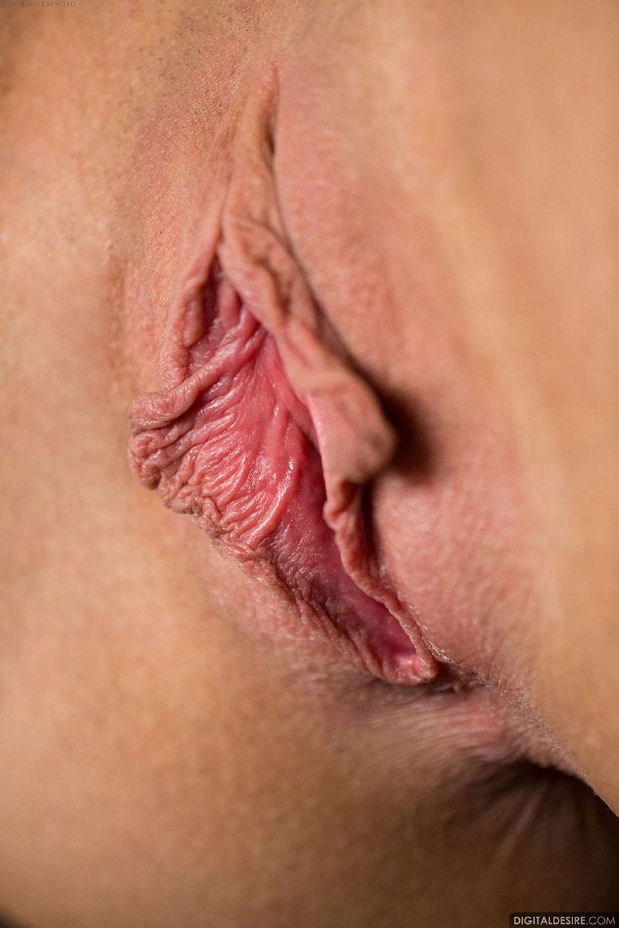 Дамские ухоженные киски секс фото