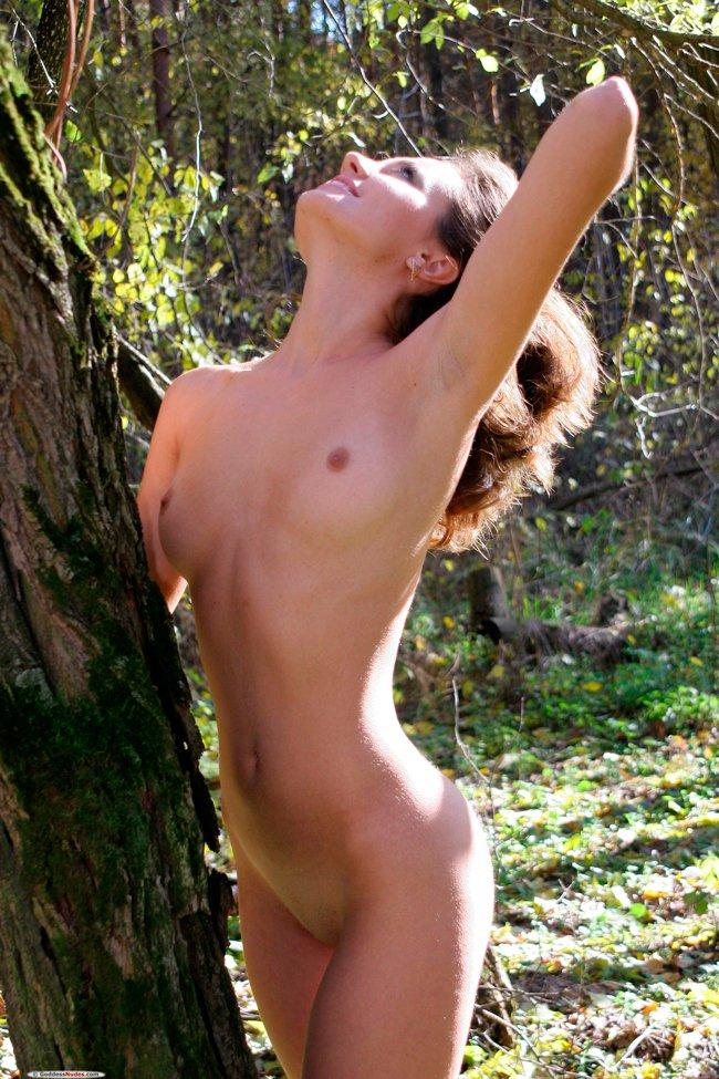Обнажённая в лесу
