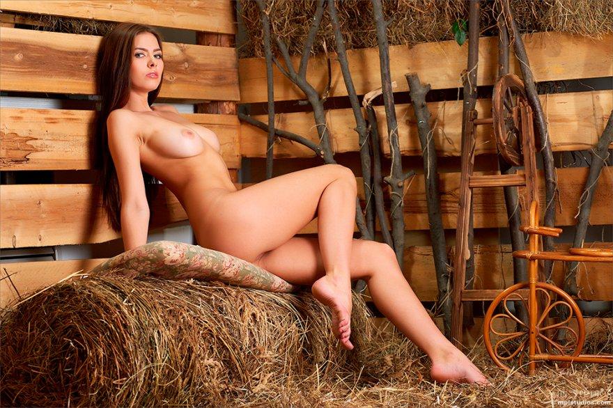 Интим фото тёлки на сеновале