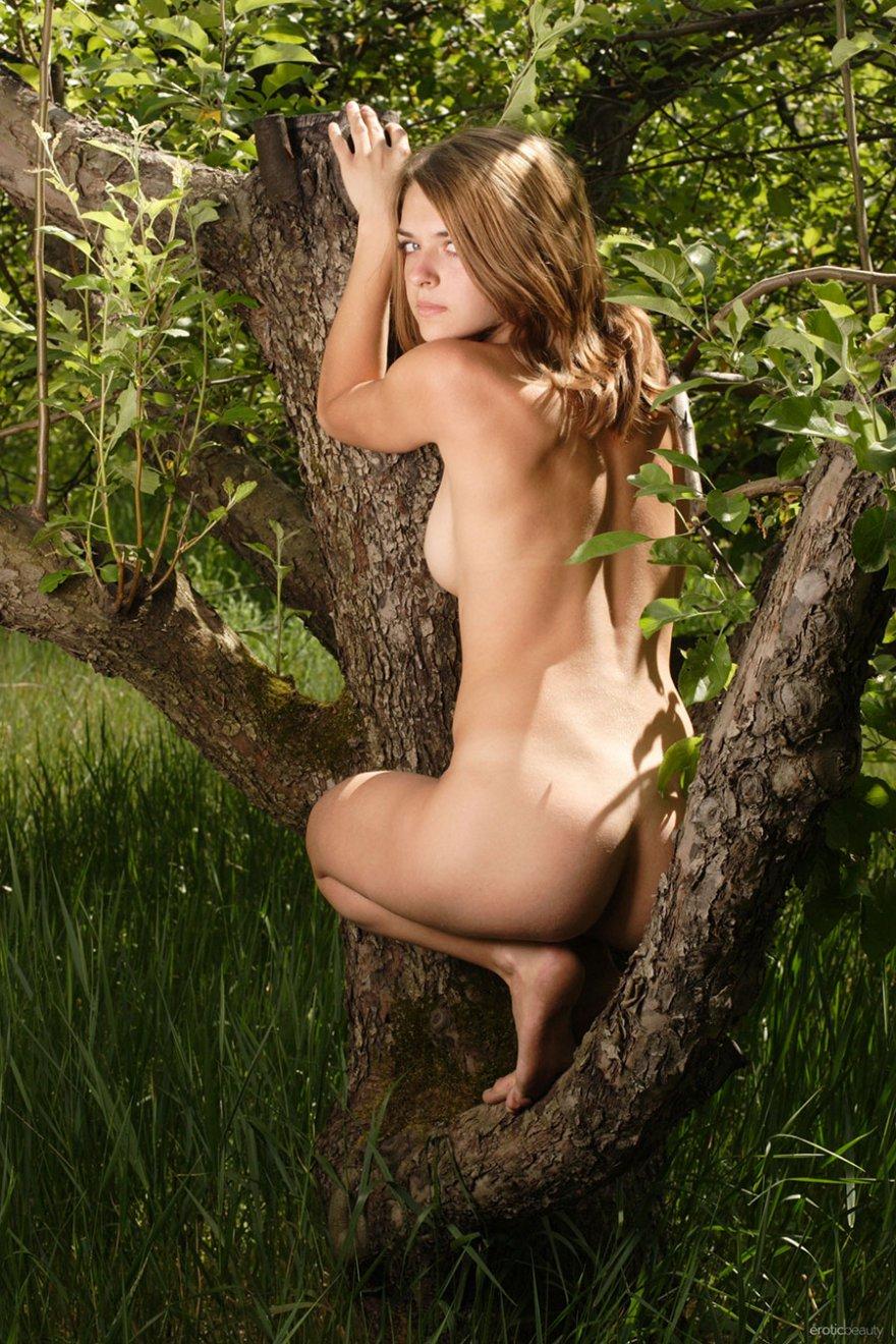 Порно фото раздетой девки под деревом секс фото