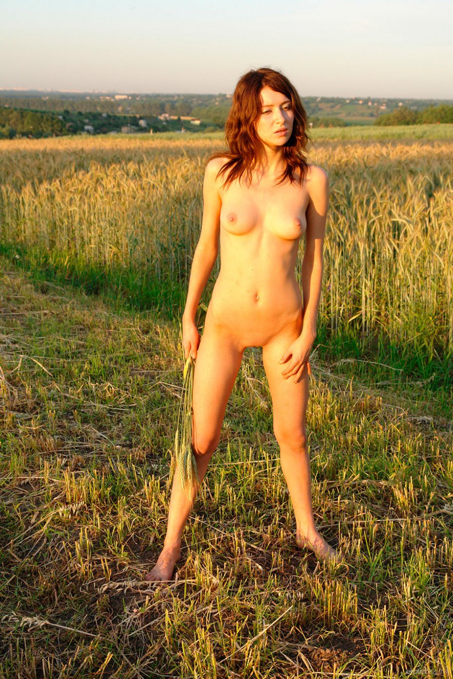 Худощавая нагая мадам в поле секс фото