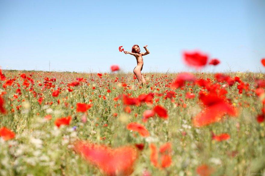 Стройная девушка эротично разделась на маковом поле