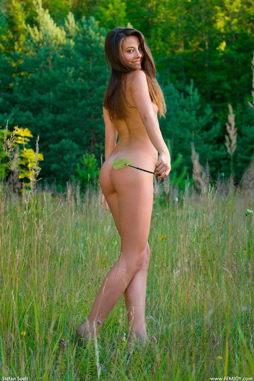 Порно на лугу на зеленой травке фото 111-461