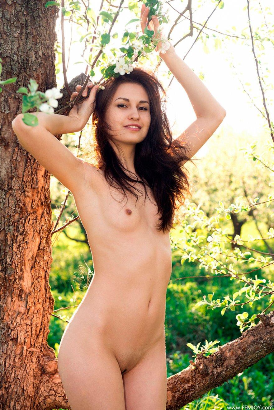 Секс фото голой супермодели с цветущей веточкой в руках