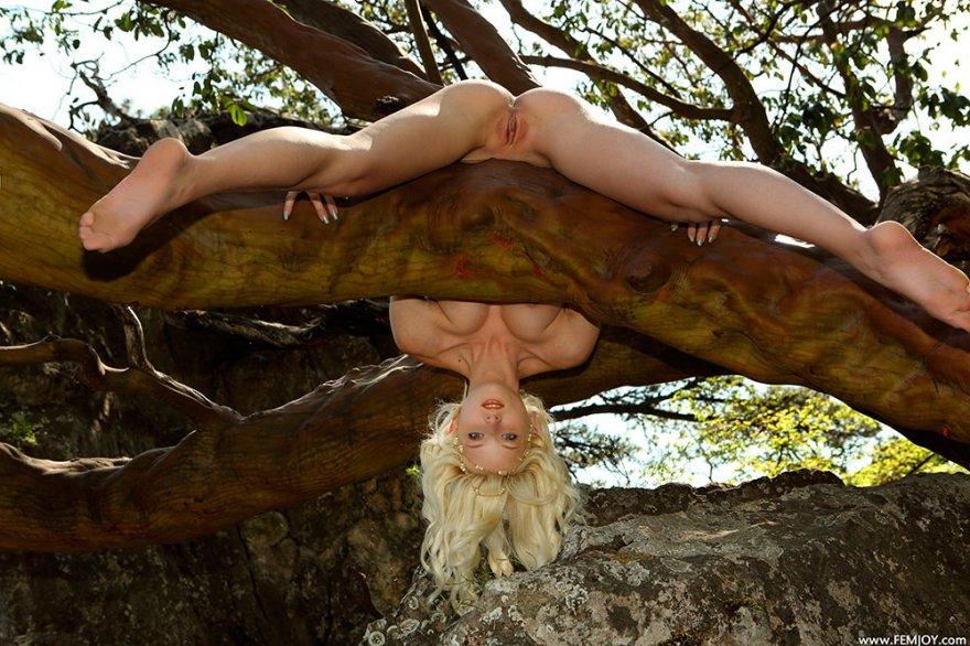 Фото интим раздетой блондинки на дереве