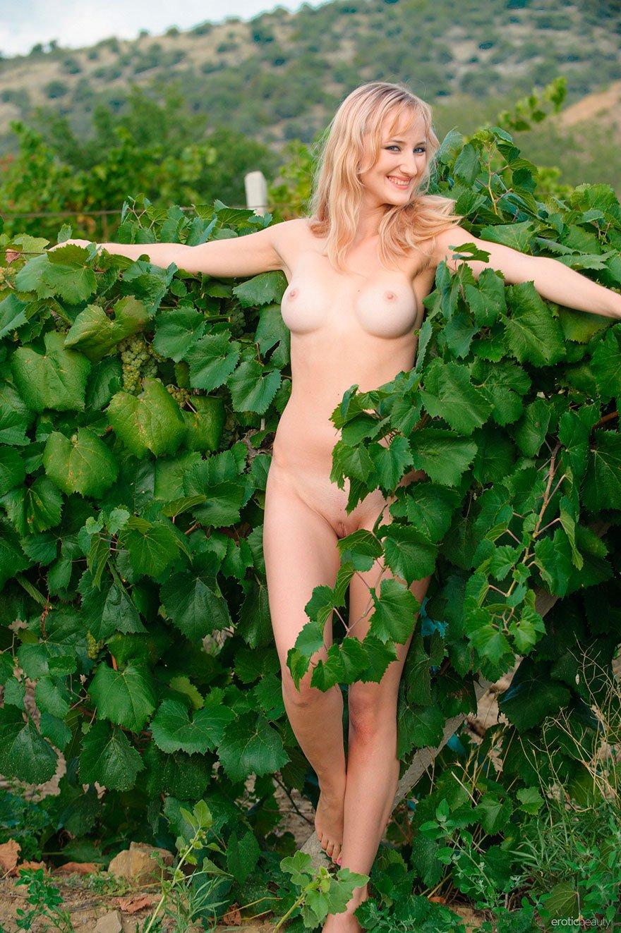 Обнаженная светловолосая девушка среди виноградных лоз секс фото