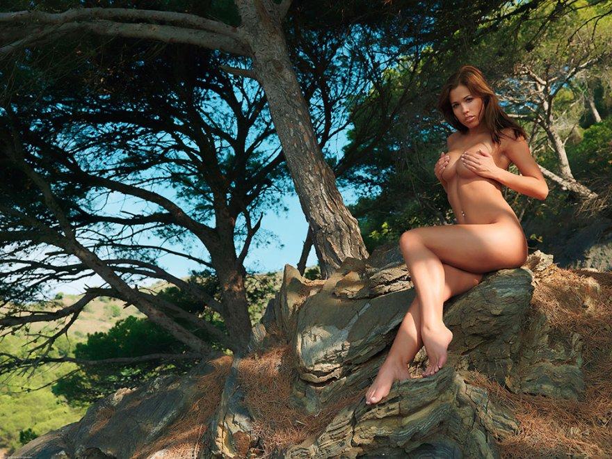 Фото ню загорелой девушки под деревом