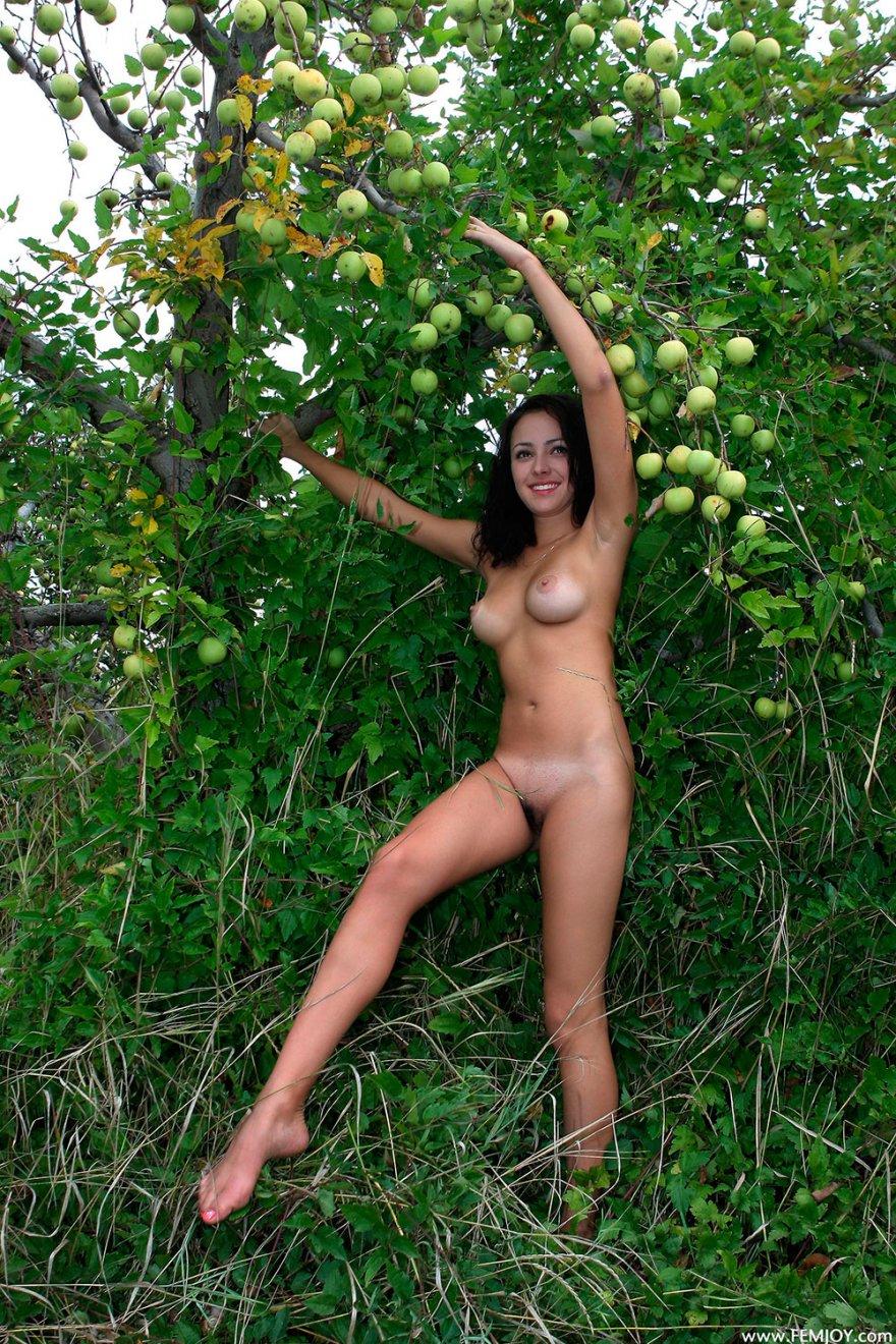 Обнаженная шатенка под яблоней