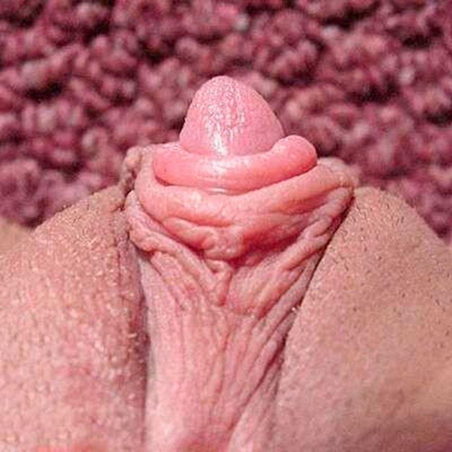 Крупные клиторы баб