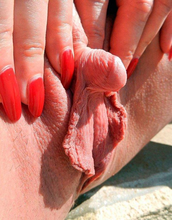 порно видео женского большого клитора