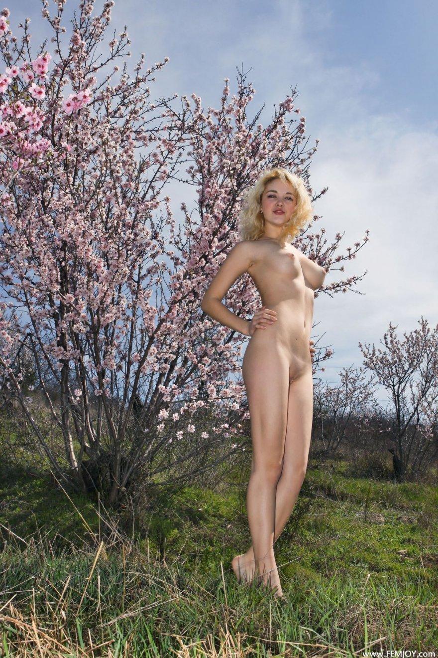 Возбуждающая блондиночка с розовыми веточками