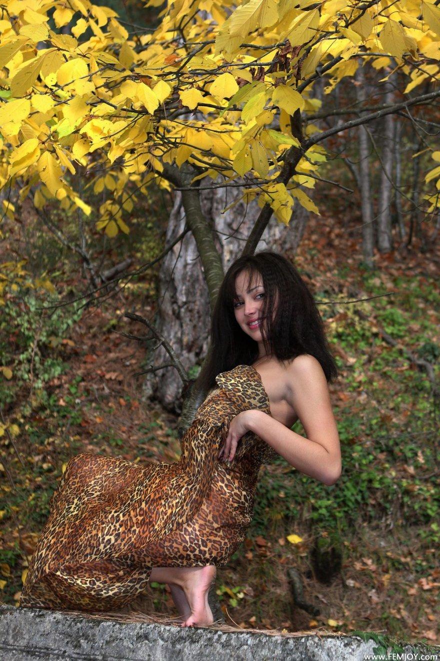 Русское порно по попе 1 фотография