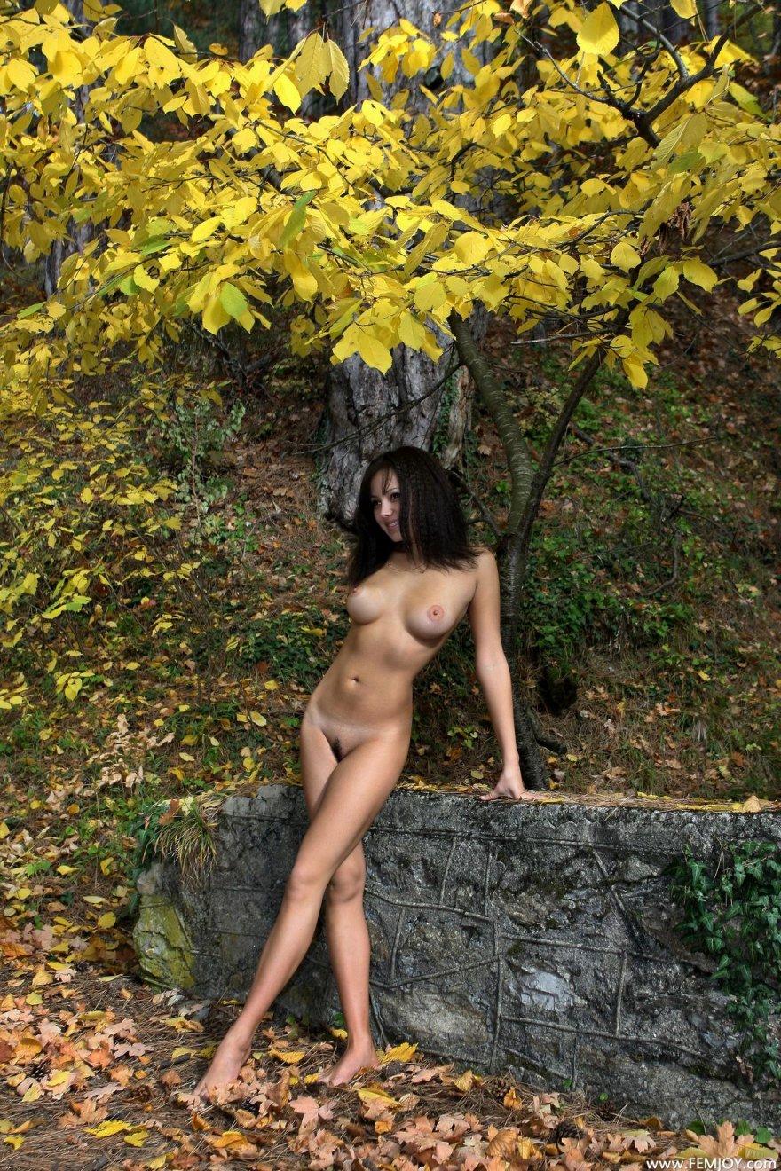Брюнетка в осеннем лесу - красивые фото ню