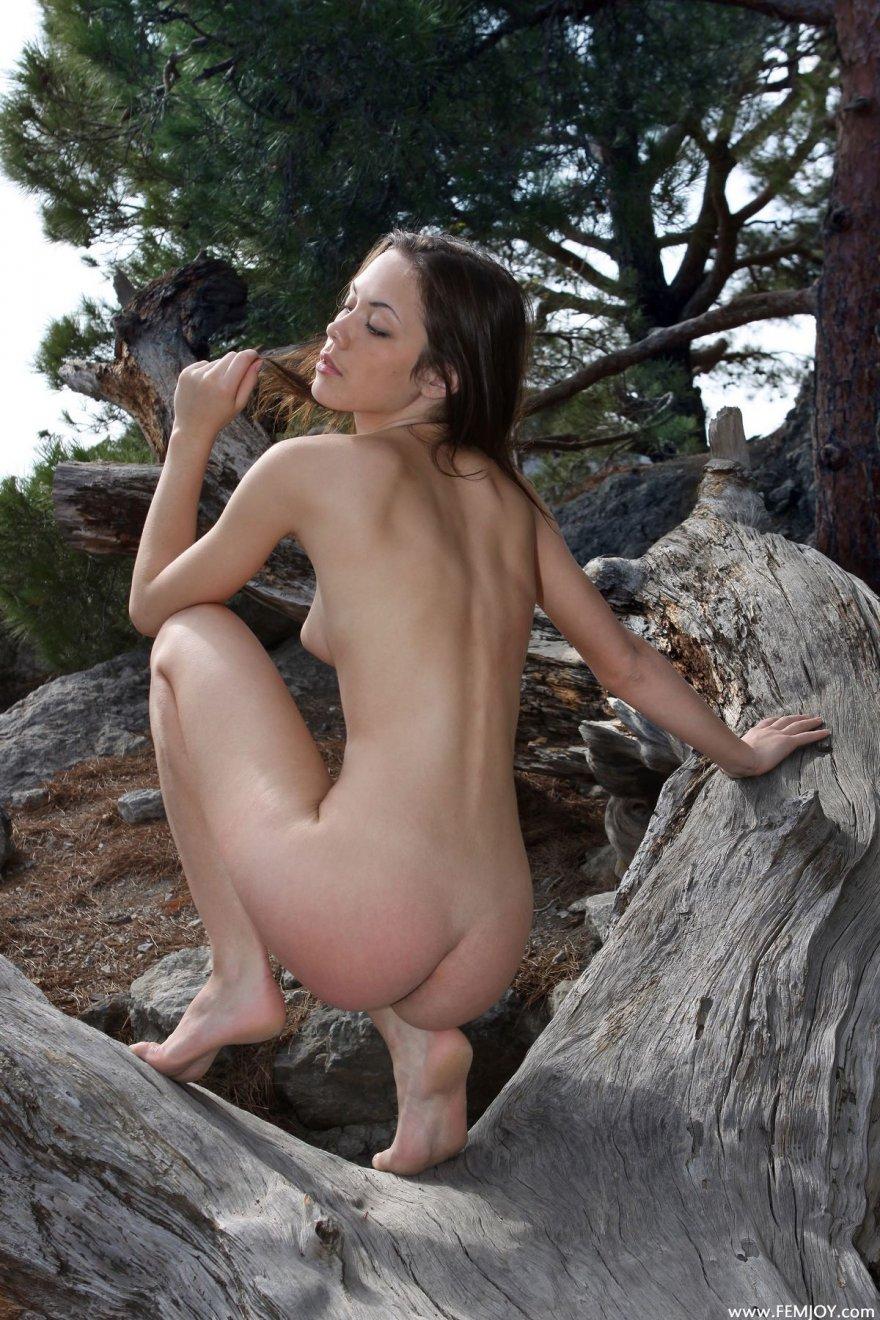 Фотки раздетой тёлки на дереве