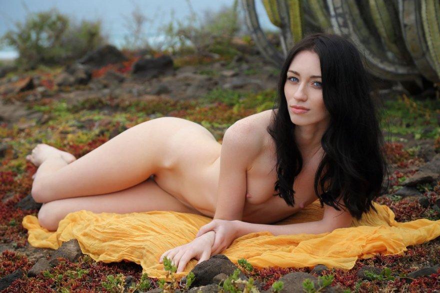 Голубоглазая тёмненькая обнаженная под кактусом секс фото