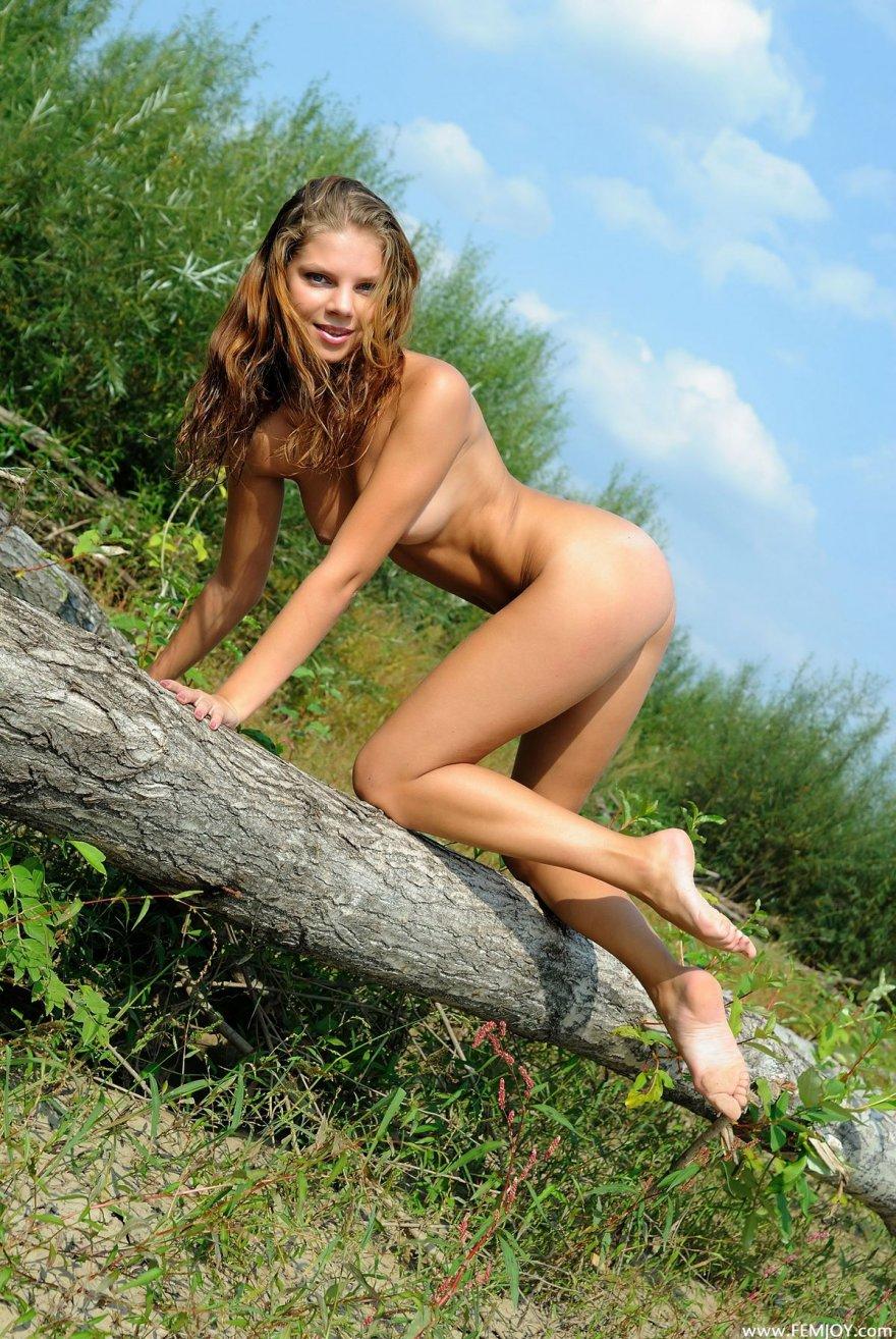 Фото голой девахи на поваленном дереве