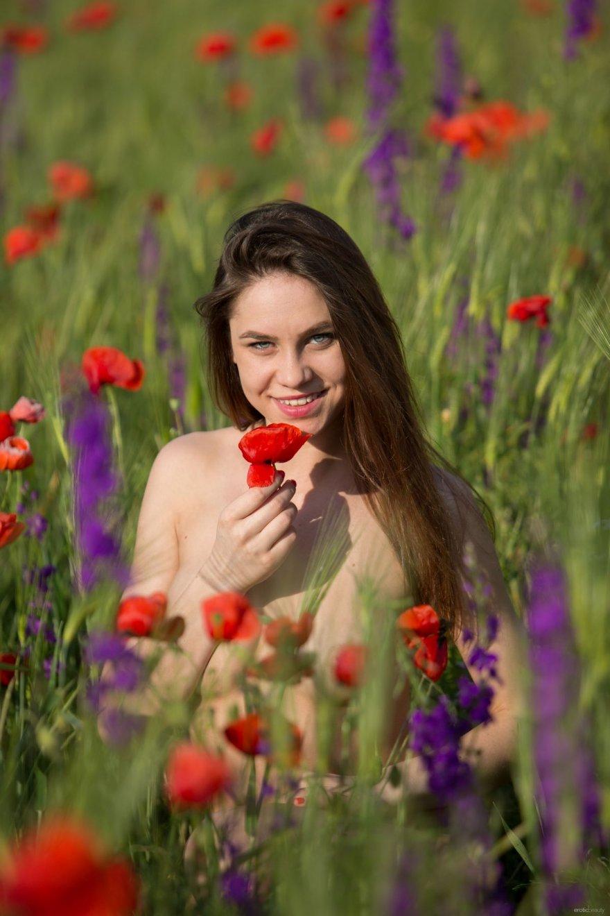 Молодая голая девушка на маковом поле