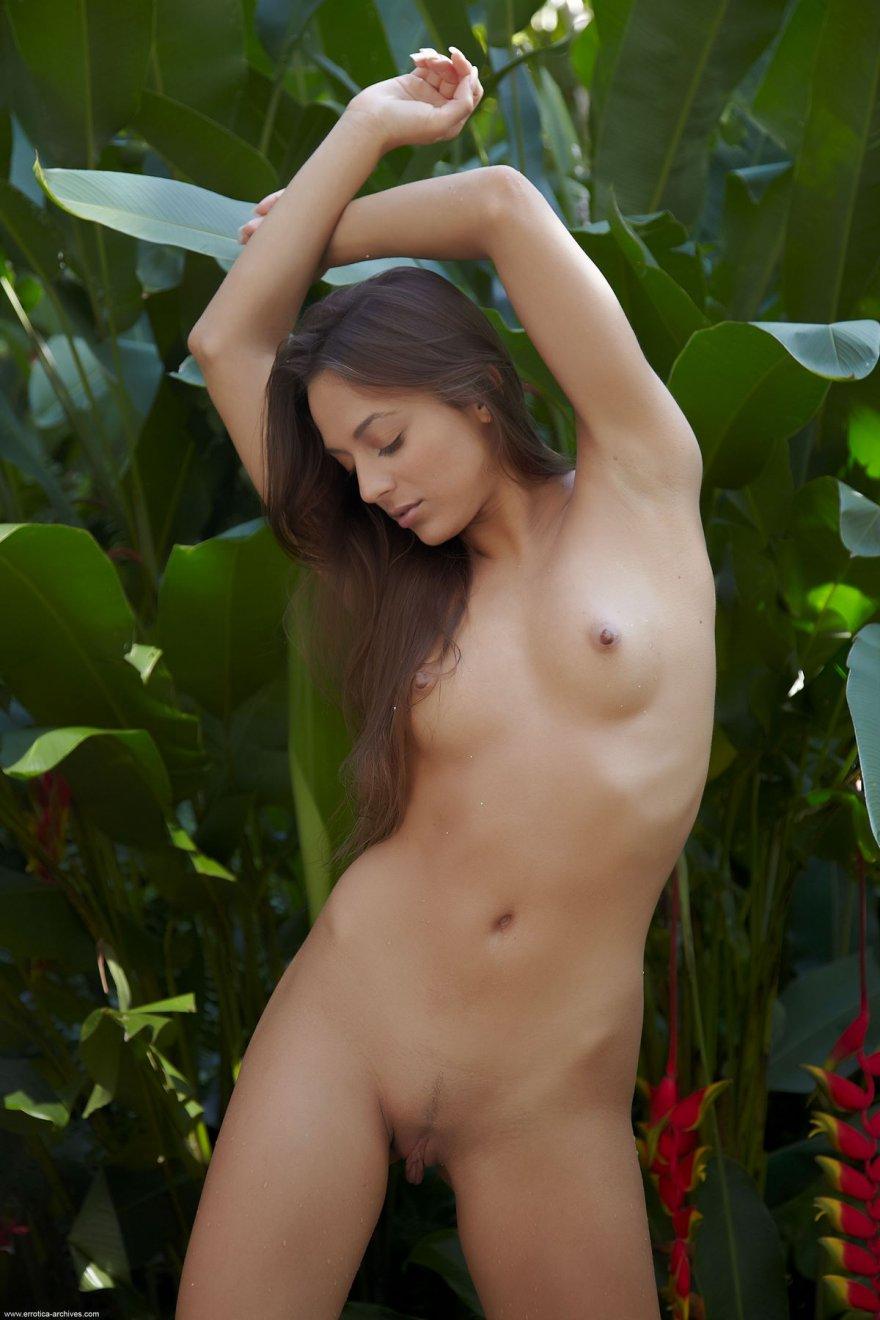 Загорелая попка девушки под кустом
