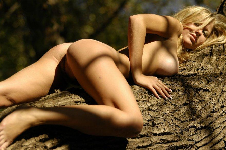 Эро фото голой светловолосые девки на дереве