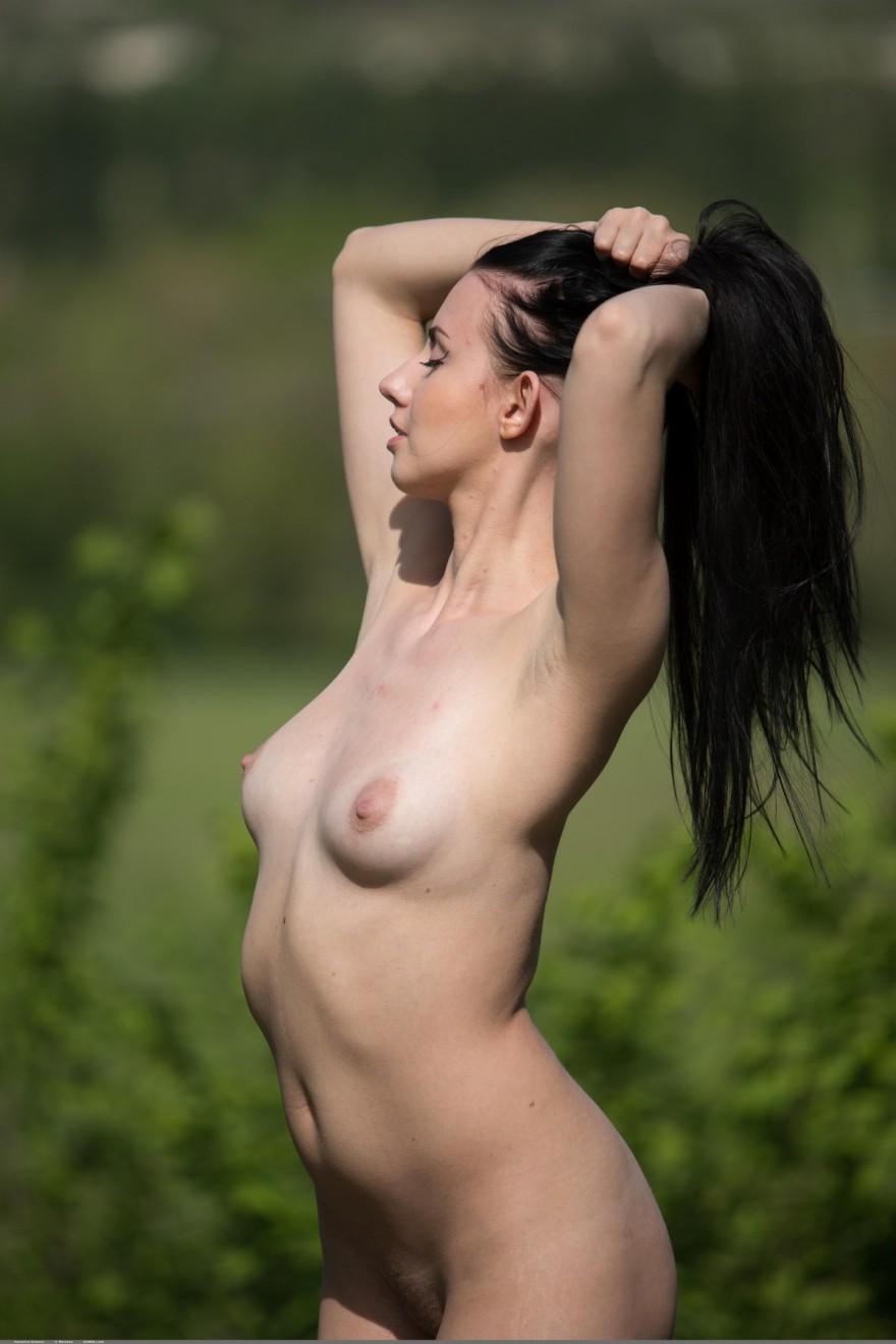 Красивая голая брюнетка на природе