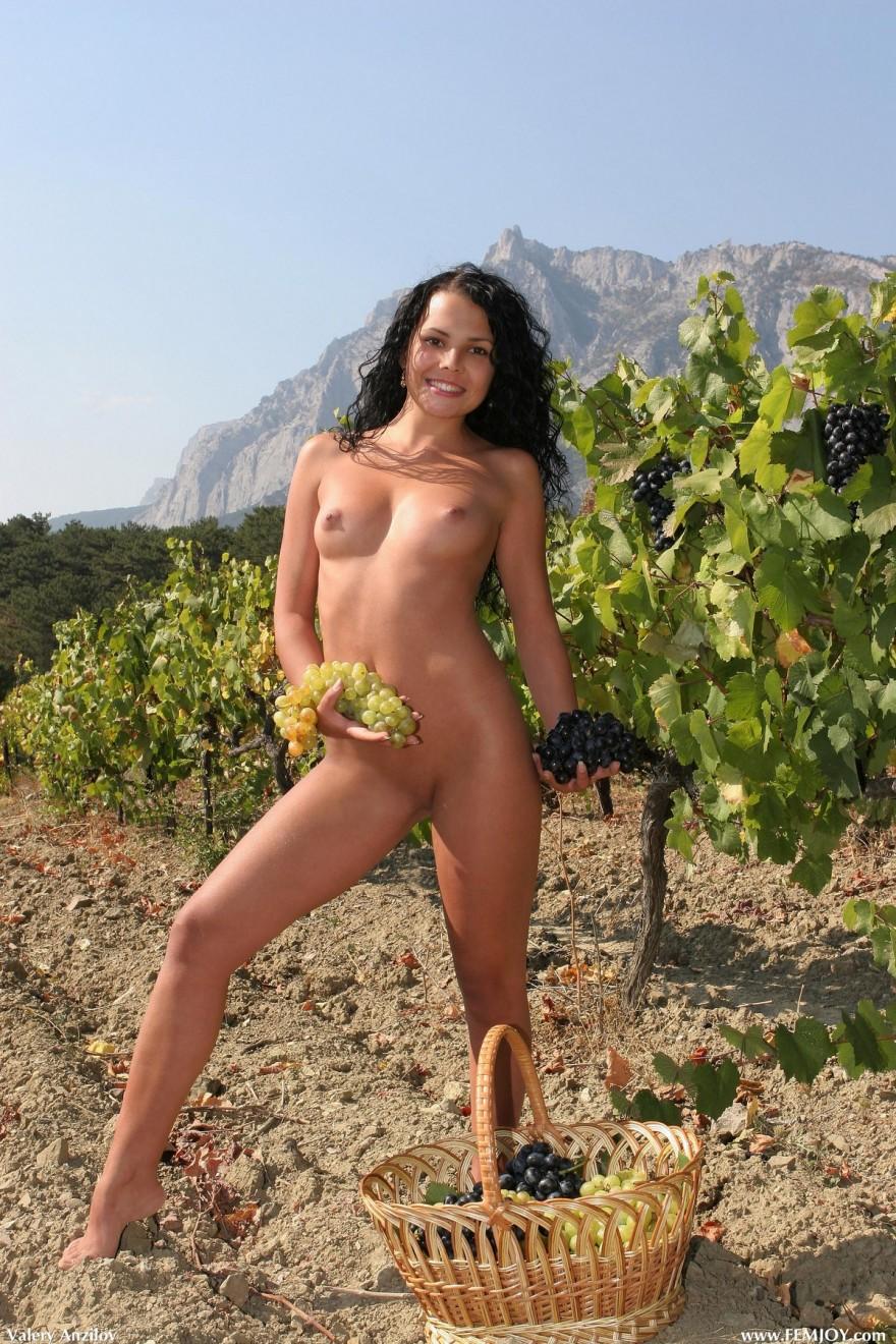 Ню голенькой девахи собирающей виноград