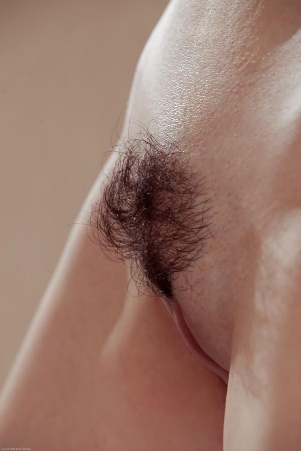 самый красивый волосатый лобок ничто