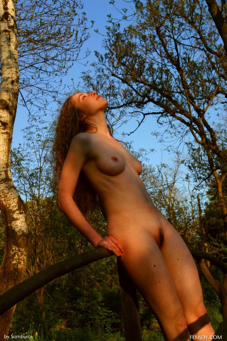 Голая барышня бродит на поляне