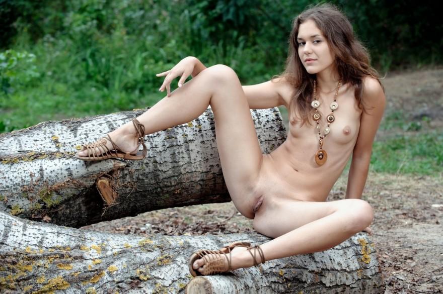 Снимки обнаженной чувихи на поваленном дереве в естественной среде