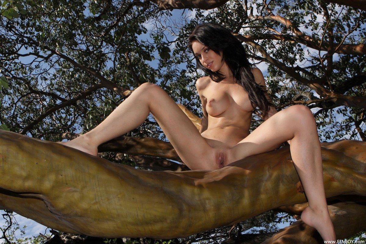 НЮ брюнетки в красном на дереве
