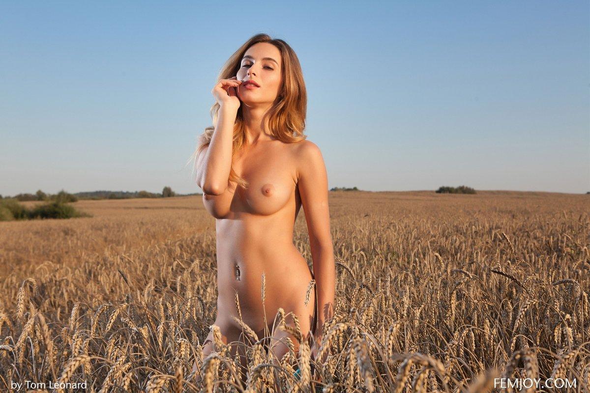 Прекрасная особа женского пола нагая среди колосьев пшеницы