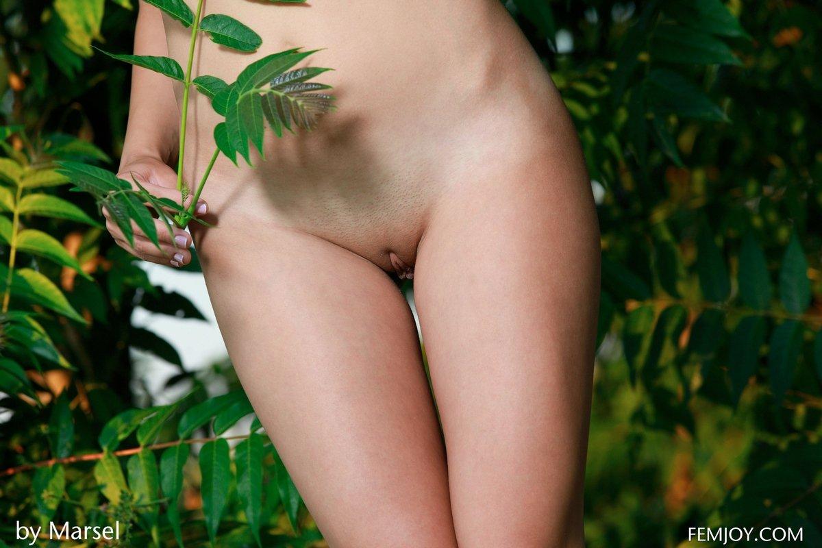 Красивая голая девушка в зеленых зарослях