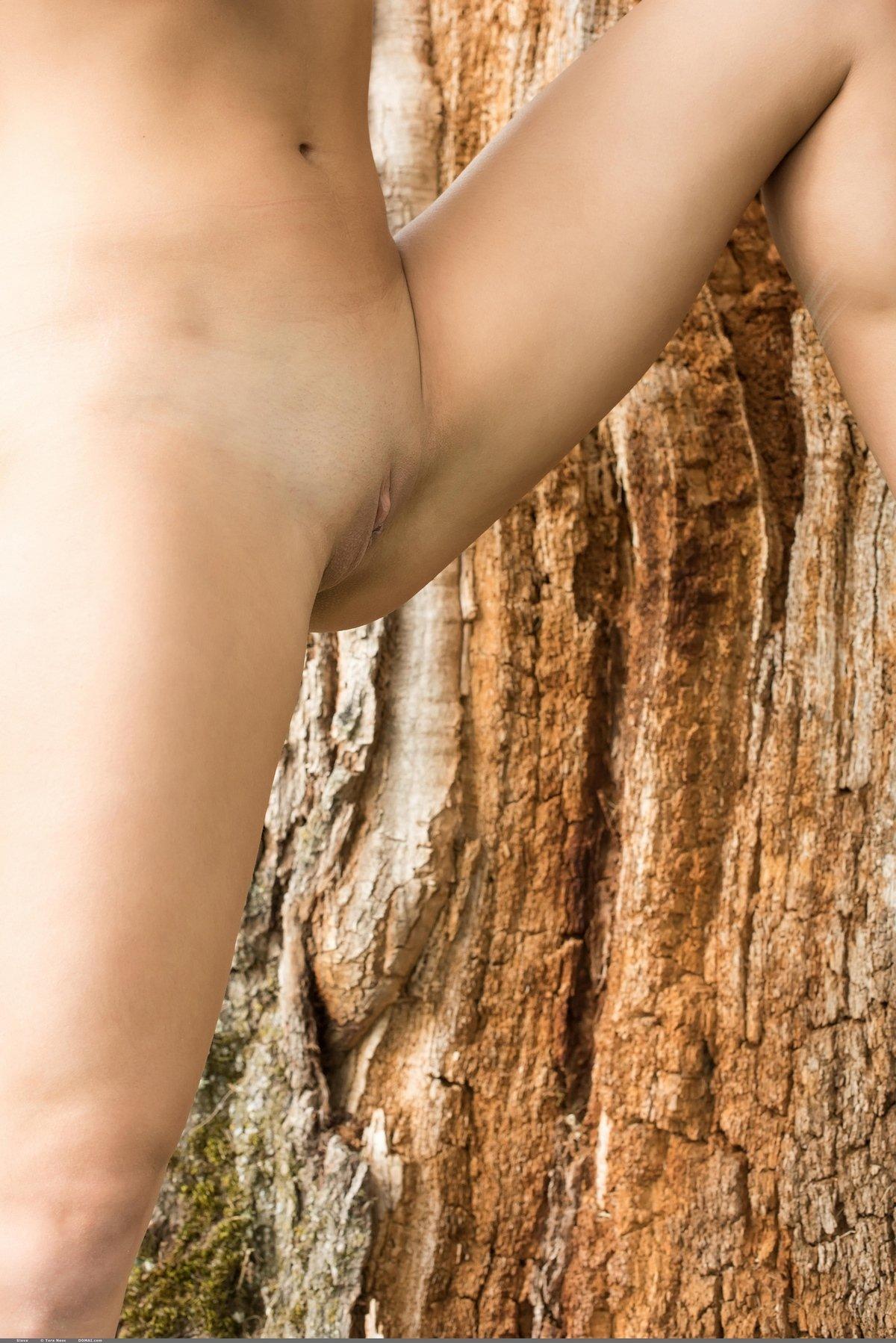 Молодая девка без нижнего белья под деревом