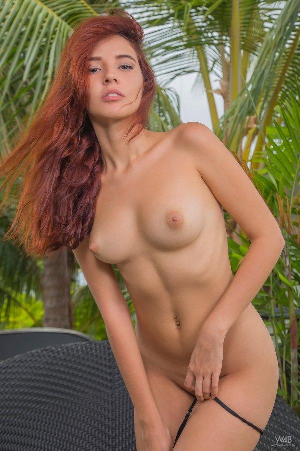Трансвеститы и трансы порно шмели