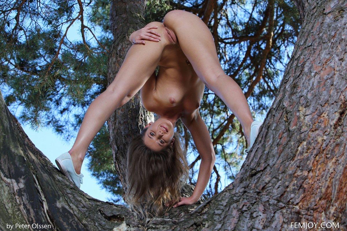 Нагая Davina растопыривает ноги на дереве